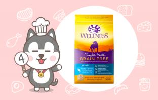 Wellness Complete Health 寵物健康全方位無穀封面
