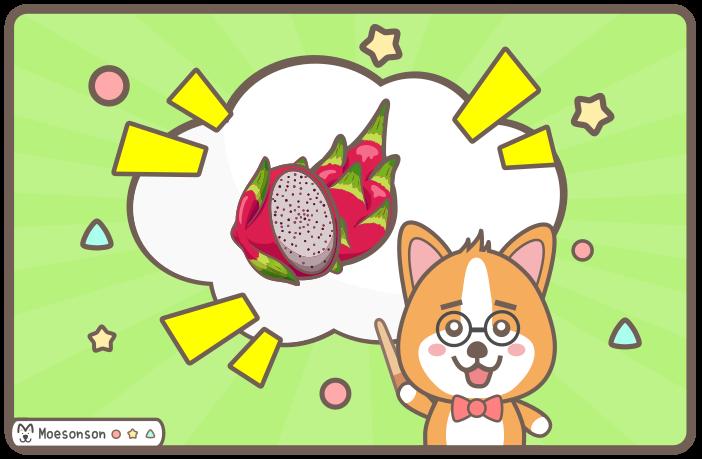 狗狗可以吃火龍果