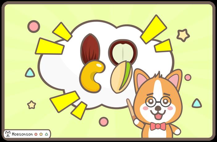 狗狗可以吃堅果嗎?