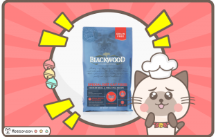 BlackWood GrainFree 貓飼料評價