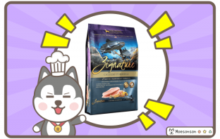 Zignature Grain Free Catfish Formula
