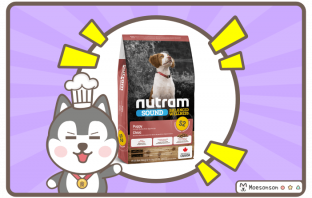 S2 Nutram Sound Balanced Wellness Chicken Meal and Whole Eggs